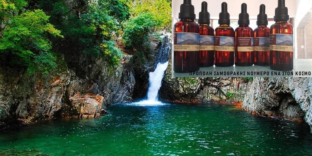 Νούμερο 1 παγκόσμια η… θαυματουργή Πρόπολη Σαμοθράκης, με τις εκπληκτικές θεραπευτικές ιδιότητες!!!